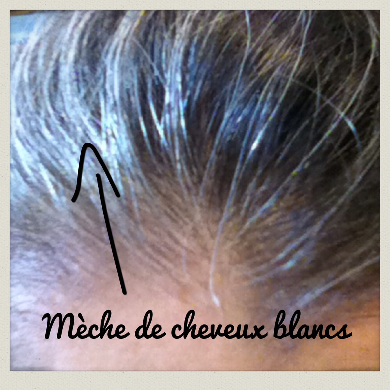 Coloration vegetale cheveux boucles