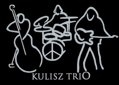 Bies Czad Blues 2012 Kulisz Trio – film