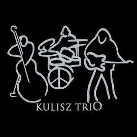 Kulisz Trio w Centrali