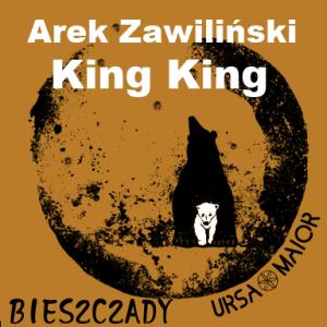 Arek Zawiliński i King King na inaugurację Ursa Maior Hall