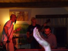 bies_czad_blues_2014_parrot_25