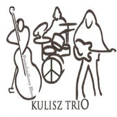 Kulisz_Historie_bluesem_pisane-cover170x170