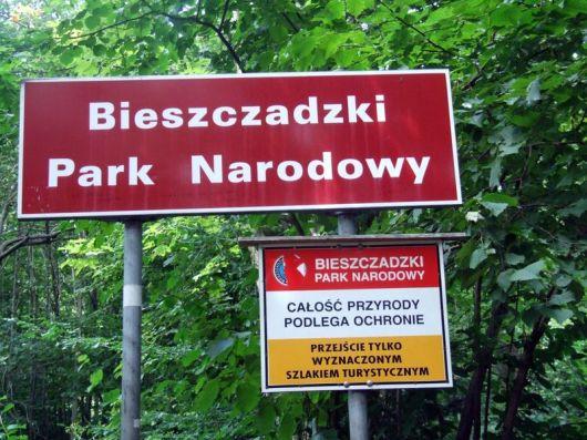 2008_Polonina_Wetlinska_89