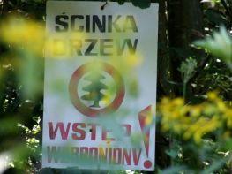 2008_Sine_Wiry_70