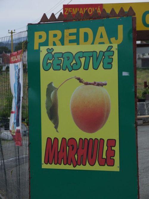 Sedliska_2011_Slowacja_54