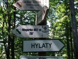 Dwernik_Kamien_2013_05