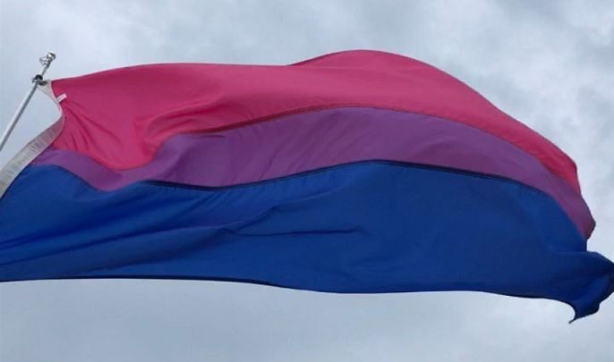 bi pride flag Leftscape