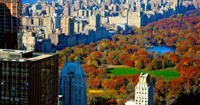 Central Park in autumn!