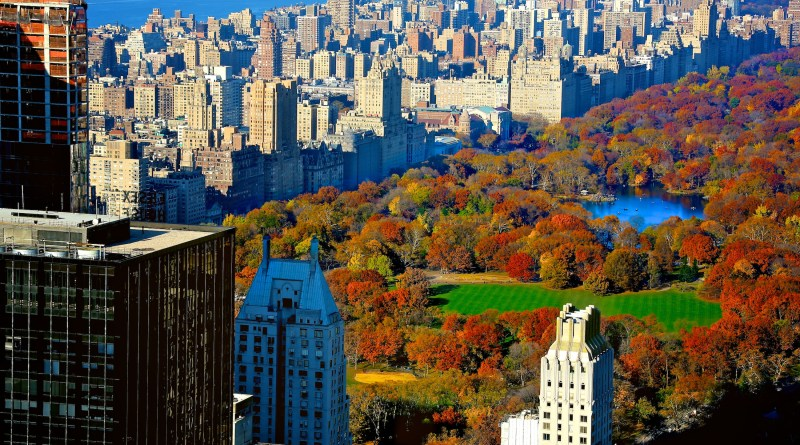 Central Park in autumn!