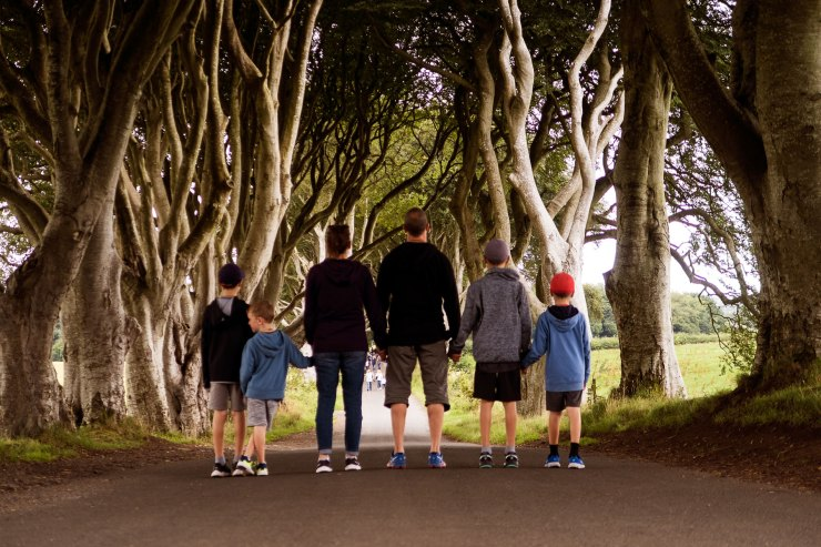The Dark Hedges (by Ben)