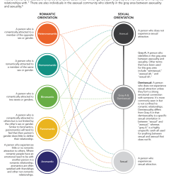 the asexual spectrum identities in the ace community infographic  [ 900 x 1147 Pixel ]