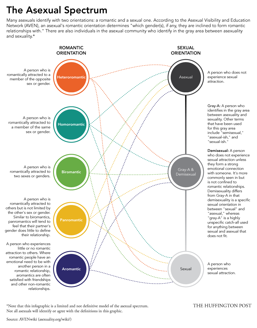 medium resolution of the asexual spectrum identities in the ace community infographic