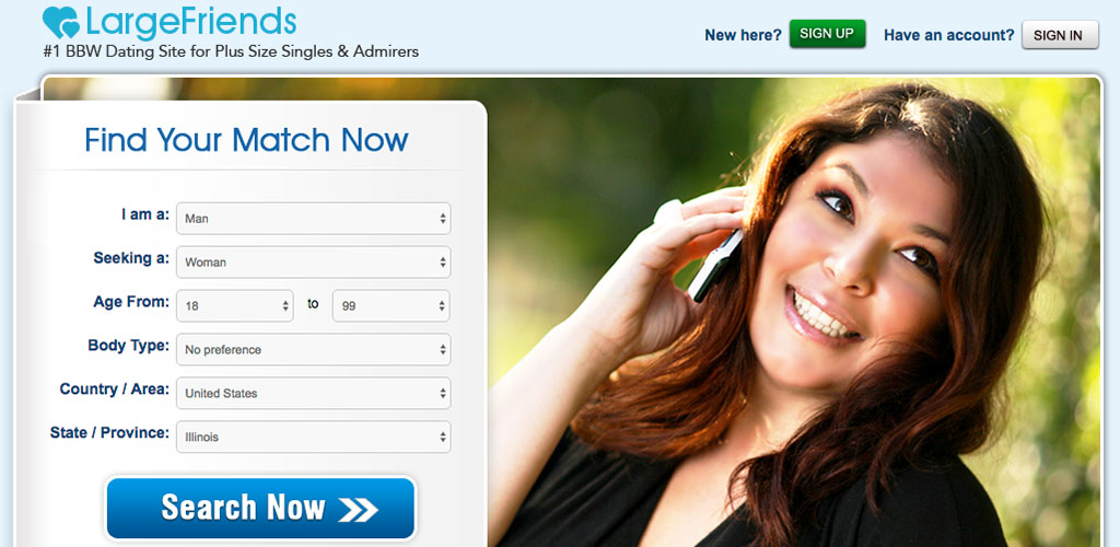 the homepage for Large Friends