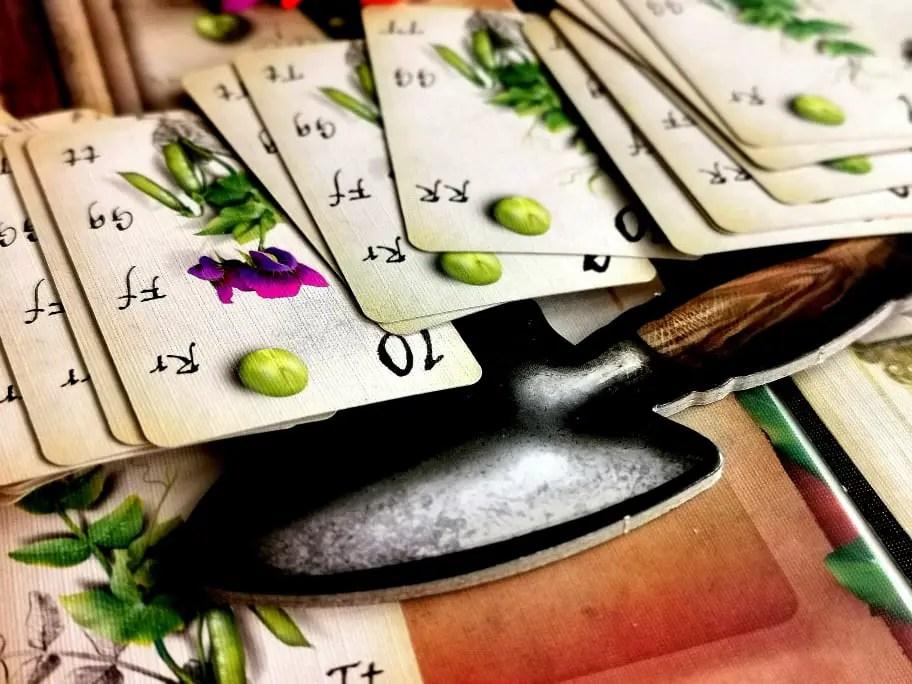 Genotype - karty