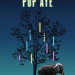 Pop Aye (2017)