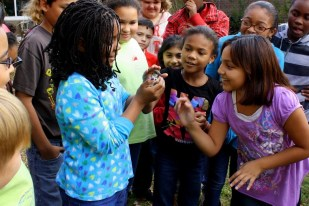 Students go eye-to eye with a schoolyard bird.