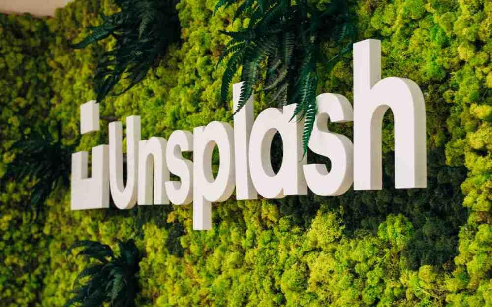 Unsplash written on a living wall