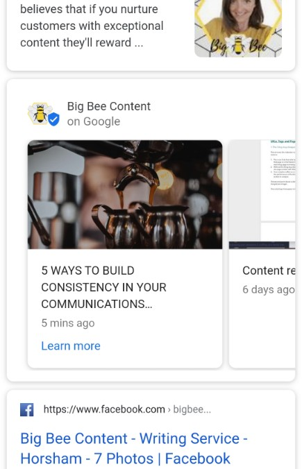 Big Bee Content Updates listing on Google SERP