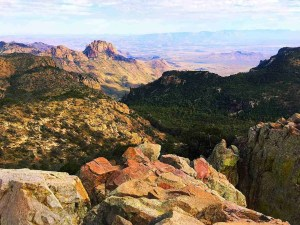 emory peak view