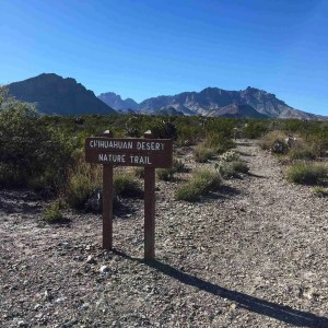 Trail head sign for the Chihuahuan Desert nature trail