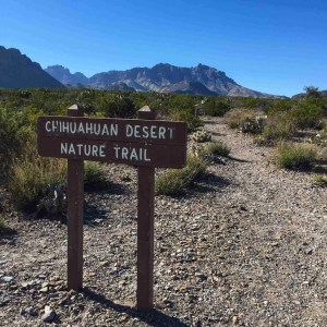 Chihuauan desert nature trail heat with chisos in backround