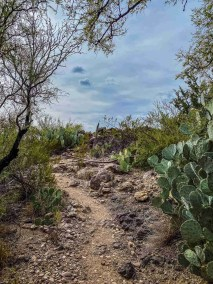 Mule Ear Spring Trail in Big Bend National Park