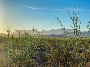 view of the chisos mountains at daybreak