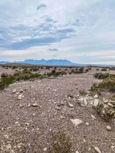 la noria ruins with chisos in background in big bend