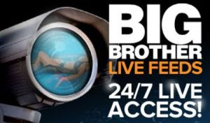 Big Brother Live Feeds Access