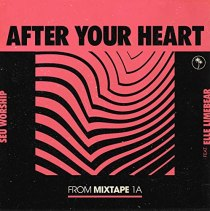 After Your Heart (feat. DAN RIVERA & ELLE LIMEBEAR) - After Your Heart