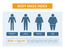 BMI graphic showing 'underweight', 'normal', 'overweight' and 'obese'