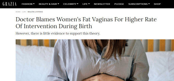 Screenshot of Grazia online article on fat vagina comments.