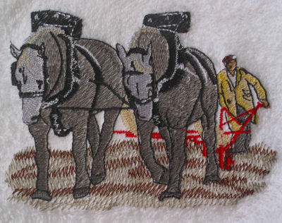 Draft/Carriage HorseTowels