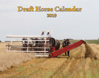 2019 Draft Horse Calender = Mischka Press
