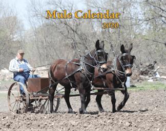 2020 Mule Calendar