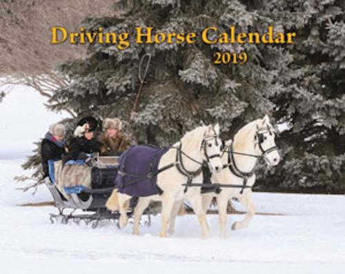 2019 Driving Horse Calendar