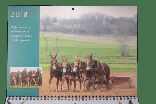 mule calendar page