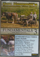 Fundamentals 3 and 4