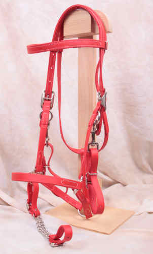 Red Halter Bridle - Beta