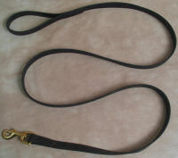 10' Beta Dog Leash 3/4 Inch Wide