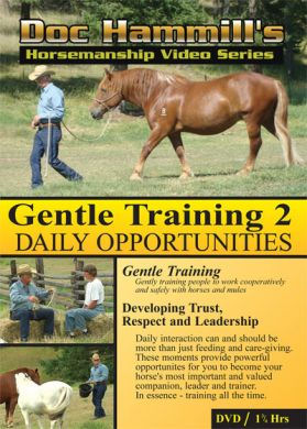 Gentle Training 2 - Daily Opportunities - Doc Hammill