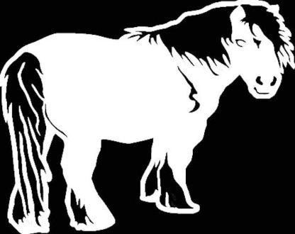 Shetland Pony Decal