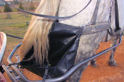 Horse Diaper