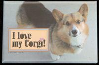 I love my Corgi Magnet
