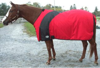Draft Horse Horse Wear