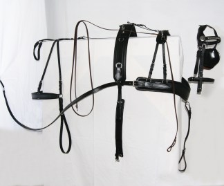 Horse Harness and Accessories