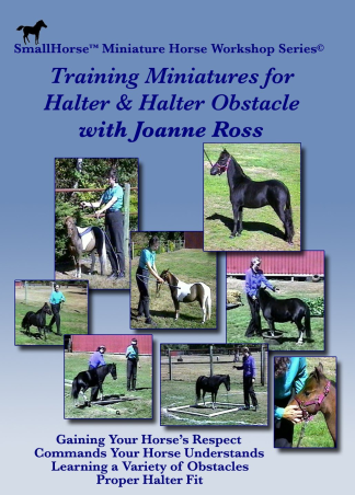 Miniature Horse and Pony Books