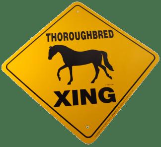 Thoroughbred Xing