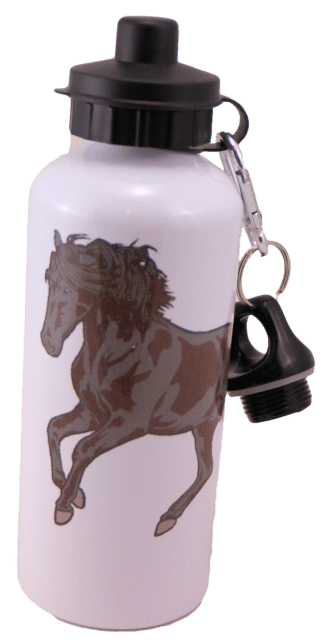 Friesian Aluminum Water Bottle