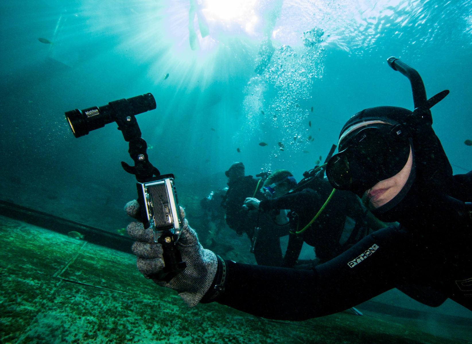 Bigblue Dive Lights Photo Gallery  Underwater Lights in